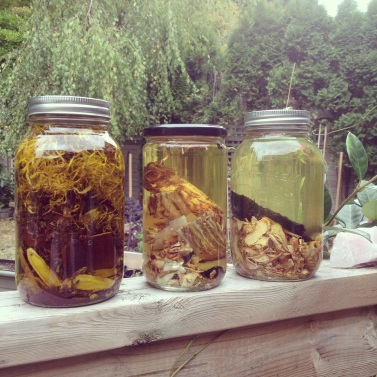 Sola Skincare chinese herbal infusions