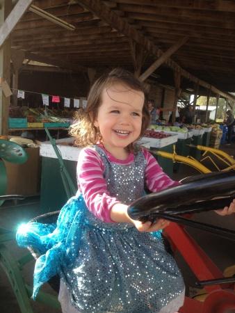 GLA Lila tractor