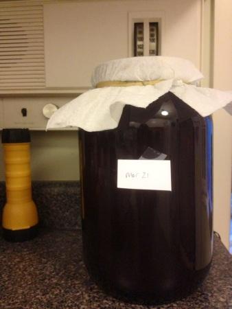 kombucha giant jar
